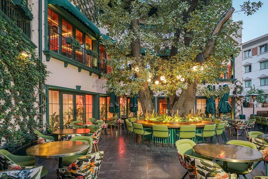 thiết kế quán cafe 2 mặt tiền Sân vườn